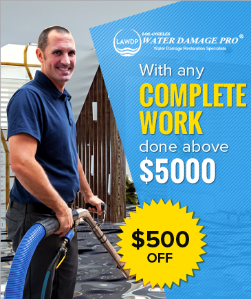 Water Damage Restoration Pro
